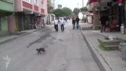İstanbulun İkitelli səmtinə məskunlaşan naxçıvanlılar