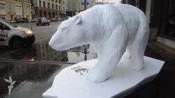 Белый медведь в Москве