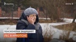 Пенсионерки из Сибири борются с чёрными лесорубами
