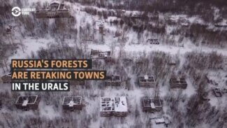 In Russia's Urals, Abandoned Industrial Towns Are Reclaimed By Forest