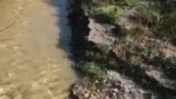 Росприроднадзор ищет организацию, сбрасывающую барду в Терек