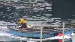 შოტლანდიელი მეთევზეები ბრექსიტს ემხრობიან