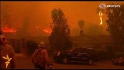 Калифорнияда кучли ёнғин сабаб 1500 одам эвакуация қилинди