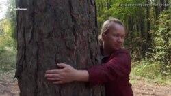 Что общего между вырубкой леса и Шаймиевым?