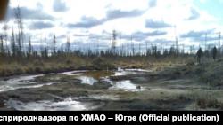 Шламонакопитель в районе куста № 603 Талинского лицензионного участка, 2012 год. Выведен из эксплуатации в 1998 году. ОАО «ТНК-Нягань» (с 2013 года «РН-Няганьнефтегаз»).