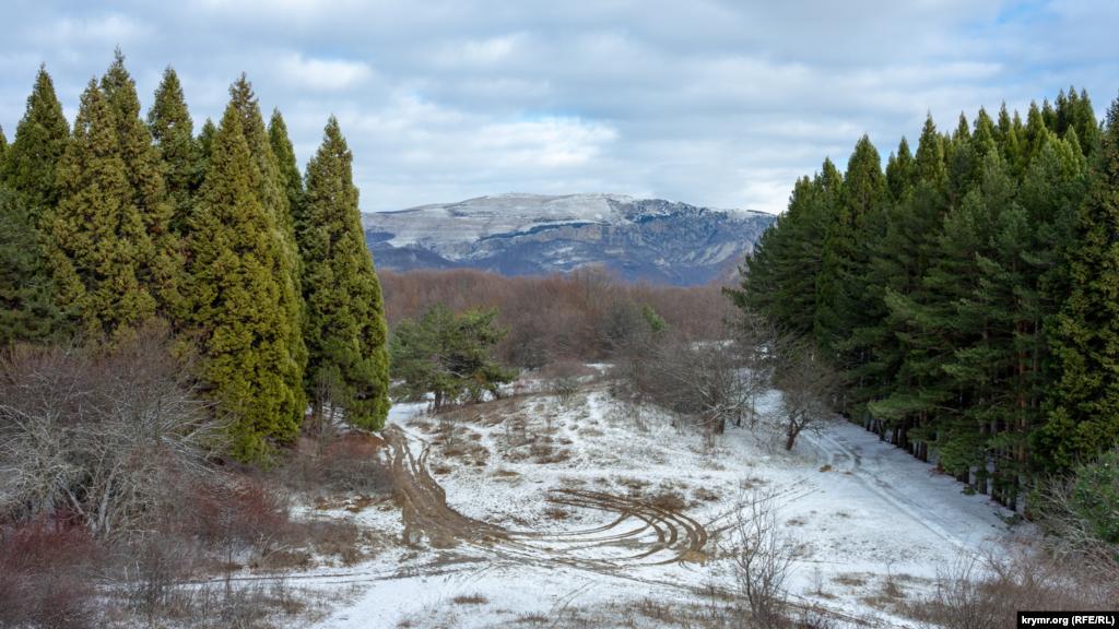 На галявині гаю секвой на Ангарському перевалі. Вдалині видніються безсніжні скелі Демерджі