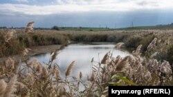 На цветущих берегах Богайлы: как живет крымское село Фрунзе (фотогалерея)