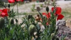 Речі з 1944. Пам'ятний глечик (відео)