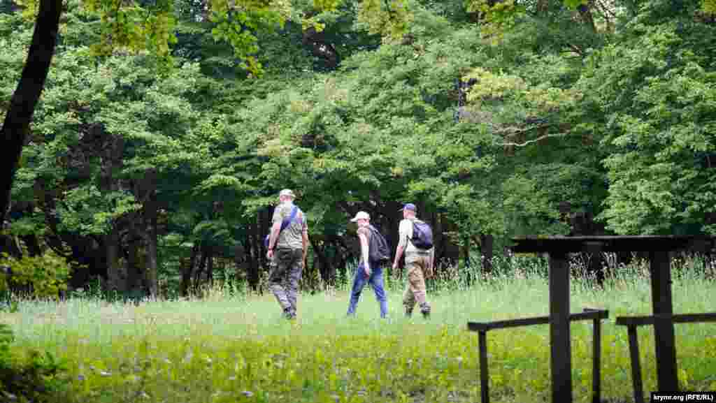 Грибники-походники пересекают поляну на Ангарском перевале. Сбор грибов для них не самоцель, а лишь дополнение к походу в горы. Мужчины держат путь на нижнее плато Чатыр-Дага