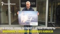 В Москве экологи с Северного Кавказа провели пикет