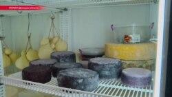 Донбасс: как фермер варит итальянский сыр (видео)