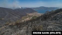 Türkiyədə meşə yanğınları 2021