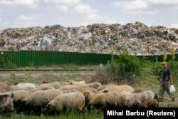 Deponija smeća pored Bukurešta.