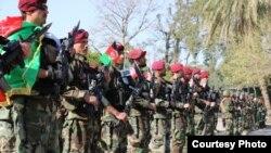 افغان امنیتي او دفاعي ځواکونه