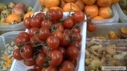 Հայ ֆերմերների բողոքը թուրքական ներկրվող լոլիկի դեմ