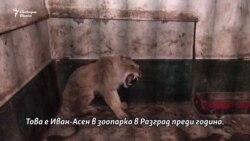 Затворниците в българските зоопаркове