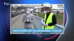 Маршо Радион тIаьххьара керланаш (24.03.2020)